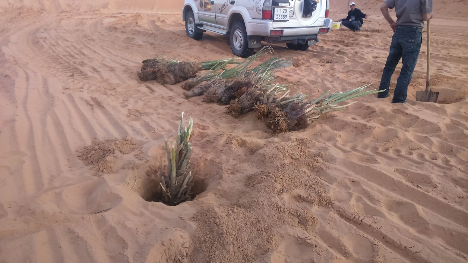 Tree Planting Off-set Tiziri Camp | How to build a Luxury ECO Desert Camp